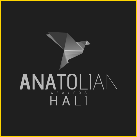Customer - Anatolian logo
